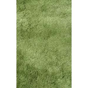 Silky Shag Collection SSC 63 Rug 5x8 Size