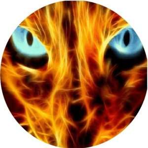 Lion Eyes on Fire Art   Fridge Magnet   Fibreglass reinforced plastic