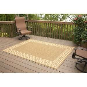 5x7 Indoor / Outdoor Rug