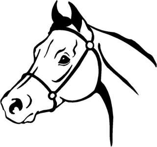 Arabian Horse Head Vinyl Decal Car Truck Window Sticker